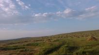 内蒙古草原上的草堆图片