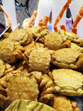 俄罗斯红毛蟹