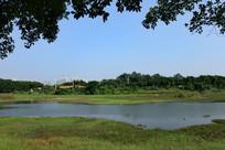 湖水与草地