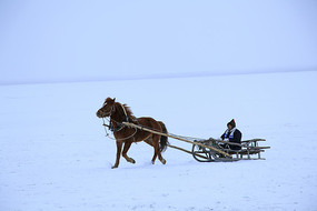乘坐马爬犁驰骋在草原上