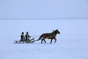 雪原乘坐马爬犁的蒙古族牧民