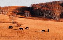 草原风景装饰画
