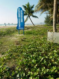 海南文昌逸龙湾海岸植被