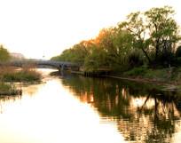 河岸日落景观图片