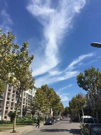 蓝天白云下的街景图片