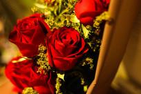 鲜艳的玫瑰花