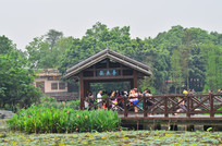 海珠湖湿地公园风景图片