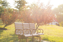 北京四德公园早晨阳光下长椅