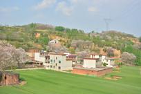 黄土高原农村