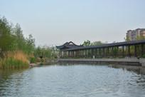 公园湖水廊亭