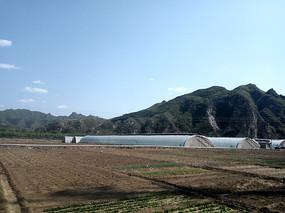 乡间的温室大棚