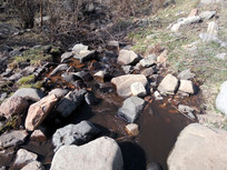 小溪水图片