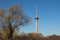 绿树和蓝天背景的电视台