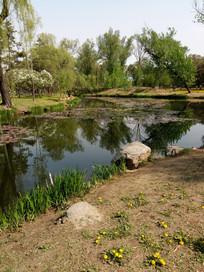 弯弯的池塘图片