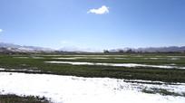 雪后的草原