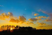 树木与蓝色天空的云彩
