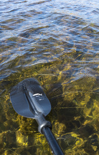 清澈的拉市海湖水
