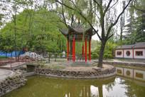 公园湖水亭台