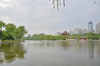 兴庆宫风景