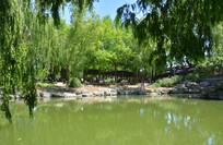 北京中山公园水塘风景