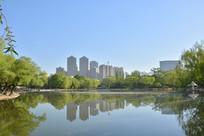 呼和浩特城市公园风景