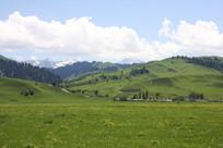 美丽的那拉提草原