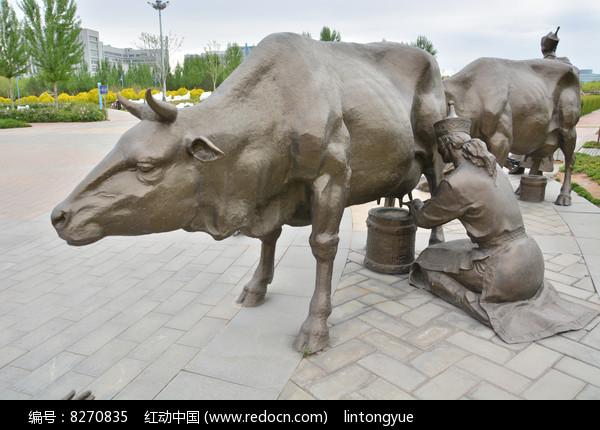 雕像蒙古族挤牛奶图片