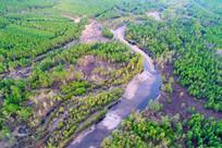 森林河风景 航拍