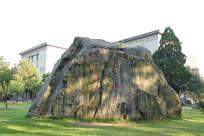 华科大公园巨石