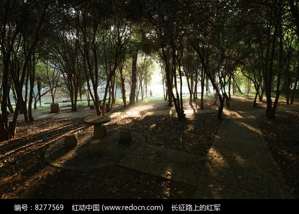 华中科技大学的校园图片