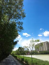 岸边蓝天白云绿树