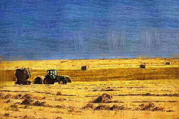 电脑油画《秋天的原野》