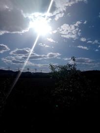 阳光中的田地图片