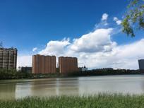 湖边草地和蓝天白云