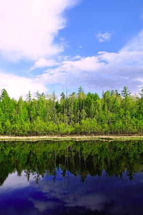 湖泊树林倒影景观