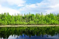 湖泊树林倒影风景