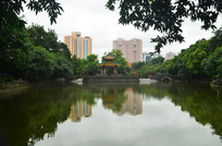 广州烈士陵园湖泊风景图片
