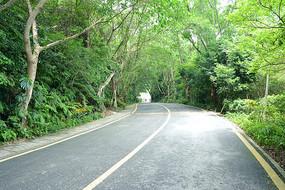 幽静的公路