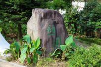 绿草中的大石头
