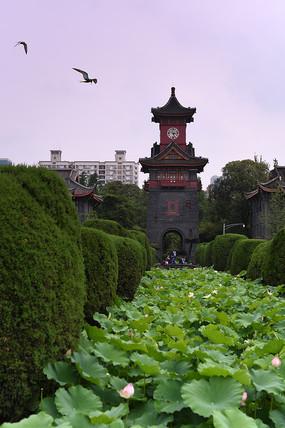 四川大学华西医科学院的钟楼