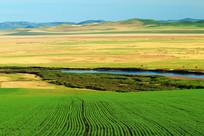 河流麦田风景