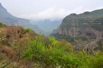 河南段的太行山峡谷山林