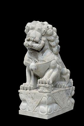 纯净背景石狮子