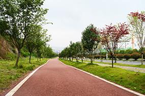 城市运动步道红色自行车道