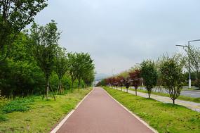新型城市自行车道