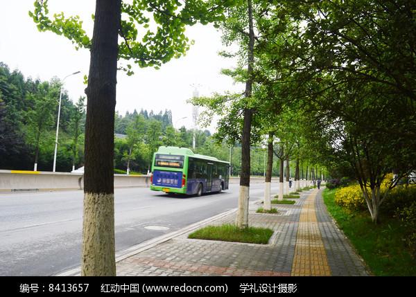 道路绿化和行驶中的公交车图片