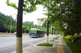 道路绿化和行驶中的公交车