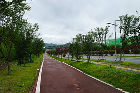 笔直的自行车道