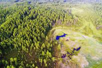 森林湿地草甸