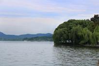 西湖杨柳景观